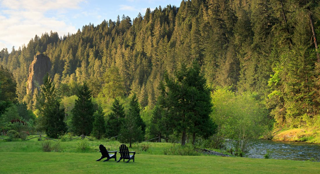 Two Adirondack chairs facing the green lawn, river and lush stand of trees.