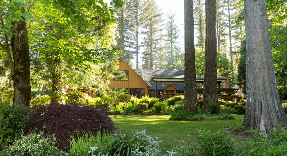 The Lodge nestled amongst green and purple bushes, a manicured lawn and stately trees.