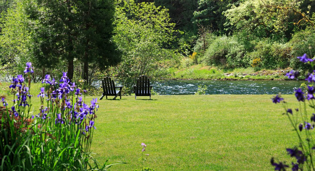 Two Adirondack chairs in the green, manicured lawn near the river with purple flowers in the foreground.